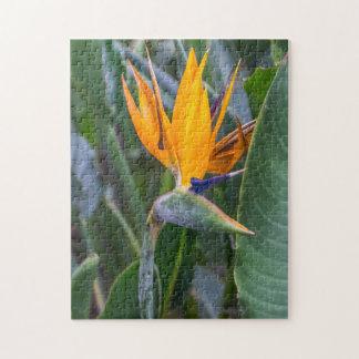 Oiseau de puzzle de photo de fleur de paradis