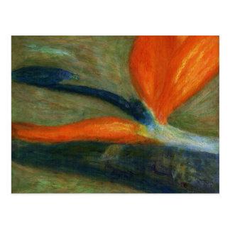 Oiseau du paradis, carte postale