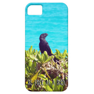 Oiseau noir iPhone 5 case