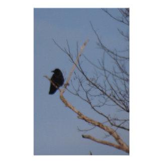 Oiseau noir motifs pour papier à lettre
