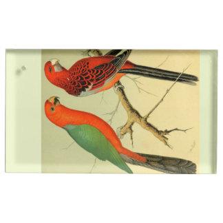 Oiseaux colorés de l'Amazone : illustration 1878 Porte-cartes De Table
