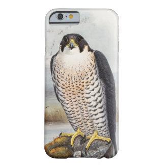 Oiseaux de John Gould de faucon pérégrin de la Coque iPhone 6 Barely There