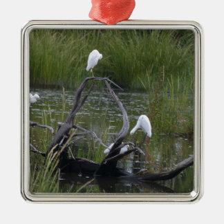 oiseaux ornement carré argenté
