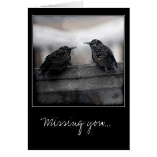Oiseaux sur vous manquer carte de voeux