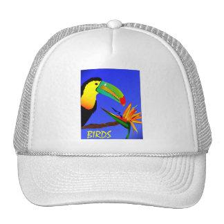 Oiseaux tropicaux casquettes