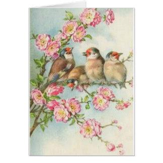 Oiseaux vintages carte de vœux