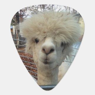 Onglet de guitare de maman Llama