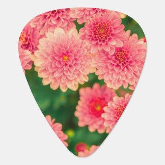 Onglet de guitare rose à la mode de la fleur des