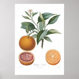 Orange, Orange de Malte