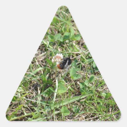 Oranje Bij op Klaver Driehoekige Stickers