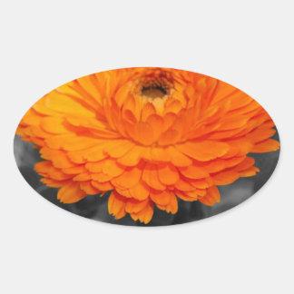 Oranje Bloem Ovale Sticker