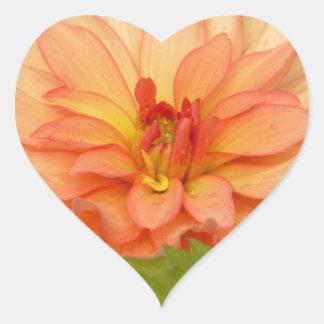 Oranje Dahlia s Hart Sticker