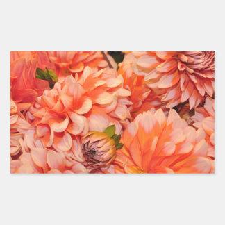Oranje dahliabloemen rechthoek sticker