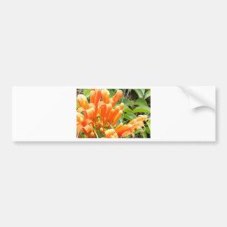Oranje Flower.jpg Bumpersticker