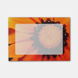 Oranje Gazania Post-it® Notes