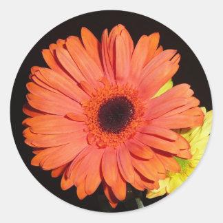 Oranje Gerber Daisy Ronde Sticker