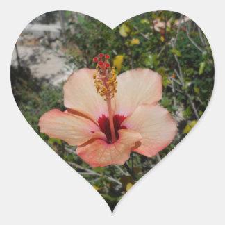 Oranje Hibiscus Hartvormige Stickers