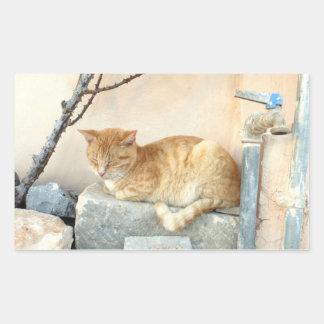 Oranje kat in zijn speciale vlek rechthoekige sticker