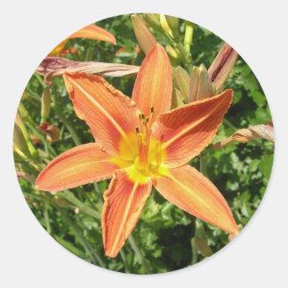 Oranje leliesticker ronde sticker
