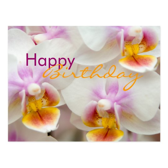 Orchidee Carte Postale D Anniversaire Zazzle Be