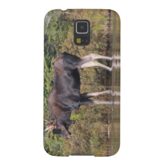 Orignaux du Maine Taureau Coque Pour Samsung Galaxy S5