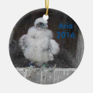 Ornement 2016 d'aria