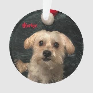 Ornement acrylique de Noël de Morkie