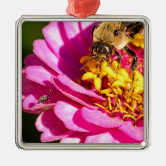 Ornement Carré Argenté abeille et insecte se tenant sur une fleur pourpre