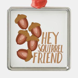 Ornement Carré Argenté Ami d'écureuil