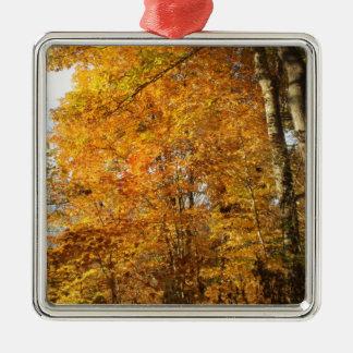 Ornement Carré Argenté Arbres d'automne
