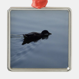 Ornement Carré Argenté Canard de natation dans le lac, bleu de faune