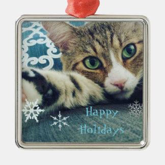 Ornement Carré Argenté Carte de vacances de chat tigré de flocon de neige