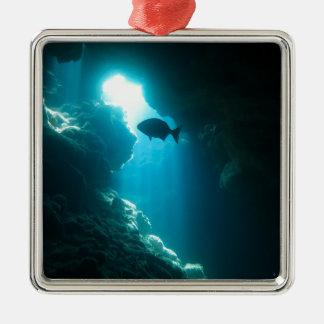Ornement Carré Argenté Caverne et poissons bleus clairs