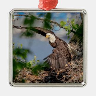 Ornement Carré Argenté Eagle chauve partant du nid