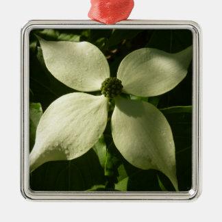 Ornement Carré Argenté Fleur blanche de ressort de fleur ensoleillée de