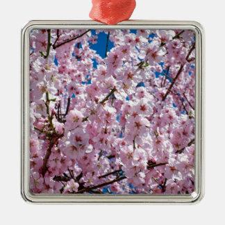 Ornement Carré Argenté Fleur japonaise de cerise