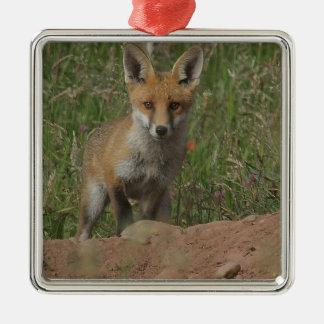 Ornement Carré Argenté Fox rouge