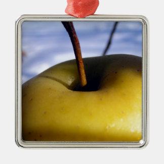 Ornement Carré Argenté Fruit surgelé