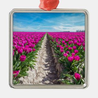 Ornement Carré Argenté Gisement de fleurs avec les tulipes et le chemin
