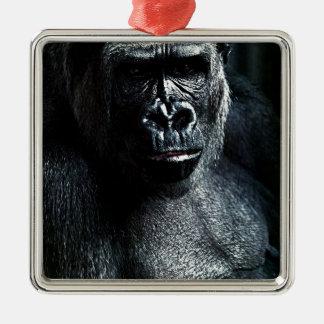 Ornement Carré Argenté Gorille