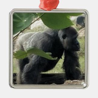 Ornement Carré Argenté Gorille de Silverback