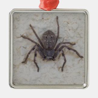Ornement Carré Argenté Grande araignée femelle de chasseur,