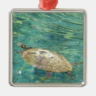 Ornement Carré Argenté grande natation de tortue de rivière