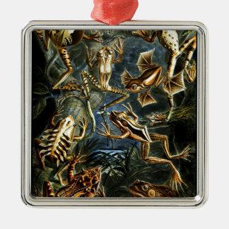 Ornement Carré Argenté Grenouilles et lézards d'amphibies d'Ernst Haeckel