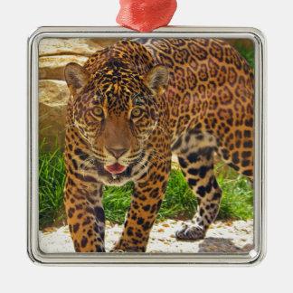 Ornement Carré Argenté Jaguar