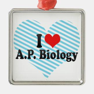 Ornement Carré Argenté J'aime A.P. Biology