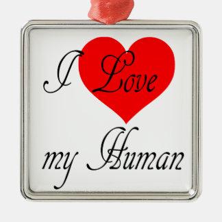Ornement Carré Argenté J'aime mon humain