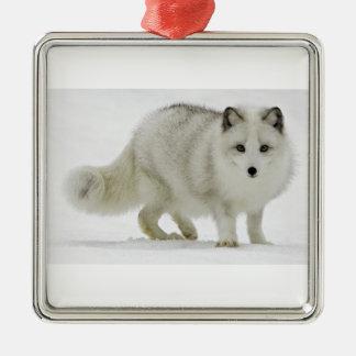 Ornement Carré Argenté Le Fox arctique blanc se mélange dans la neige