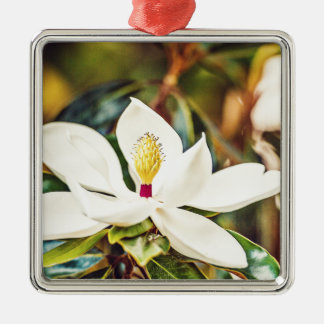 Ornement Carré Argenté Magnolia en fleur