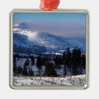 Ornement Carré Argenté Montagnes occidentales du Canada en hiver